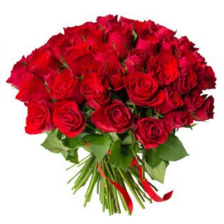 Розы Кения красные
