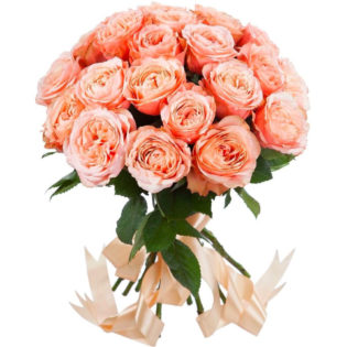 Розы Пионовидные оранжевые